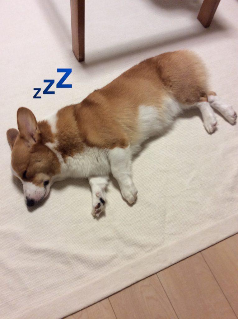 疲れたから寝るよ