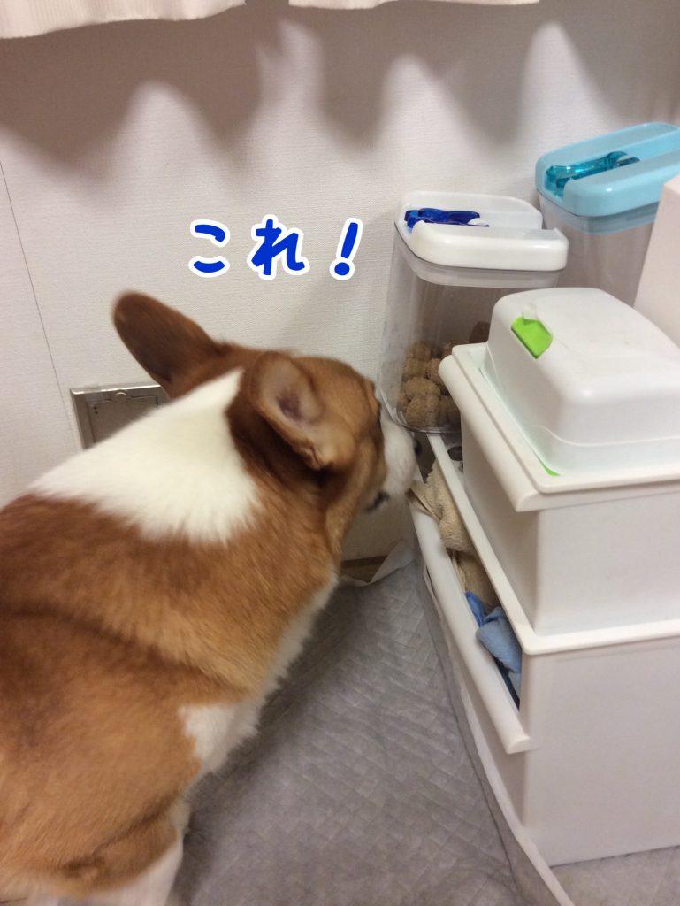 僕これ食べたい!