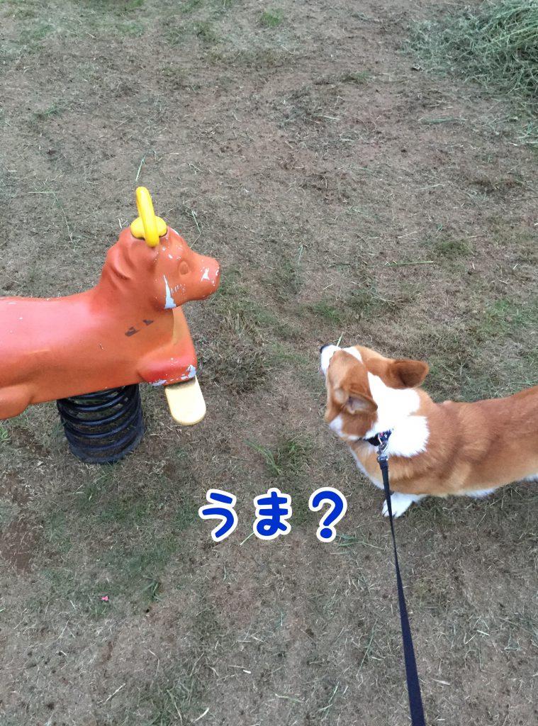 お馬さん?