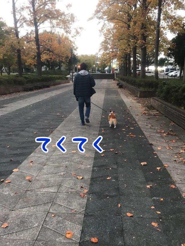 てくてく歩く二人
