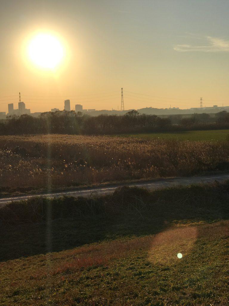 土手の夕方は夕日が綺麗でした