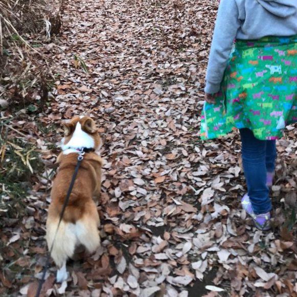 みんなで行くお散歩は楽しいね