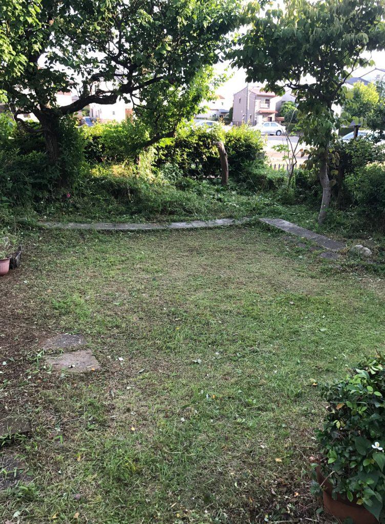 草刈りしてお庭がスッキリしました