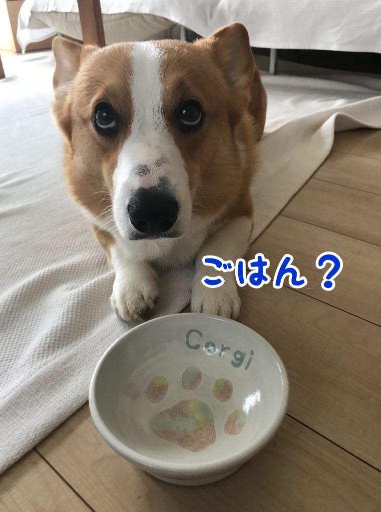 届いたのは益子の陶器市で注文したはるさんのお皿でした