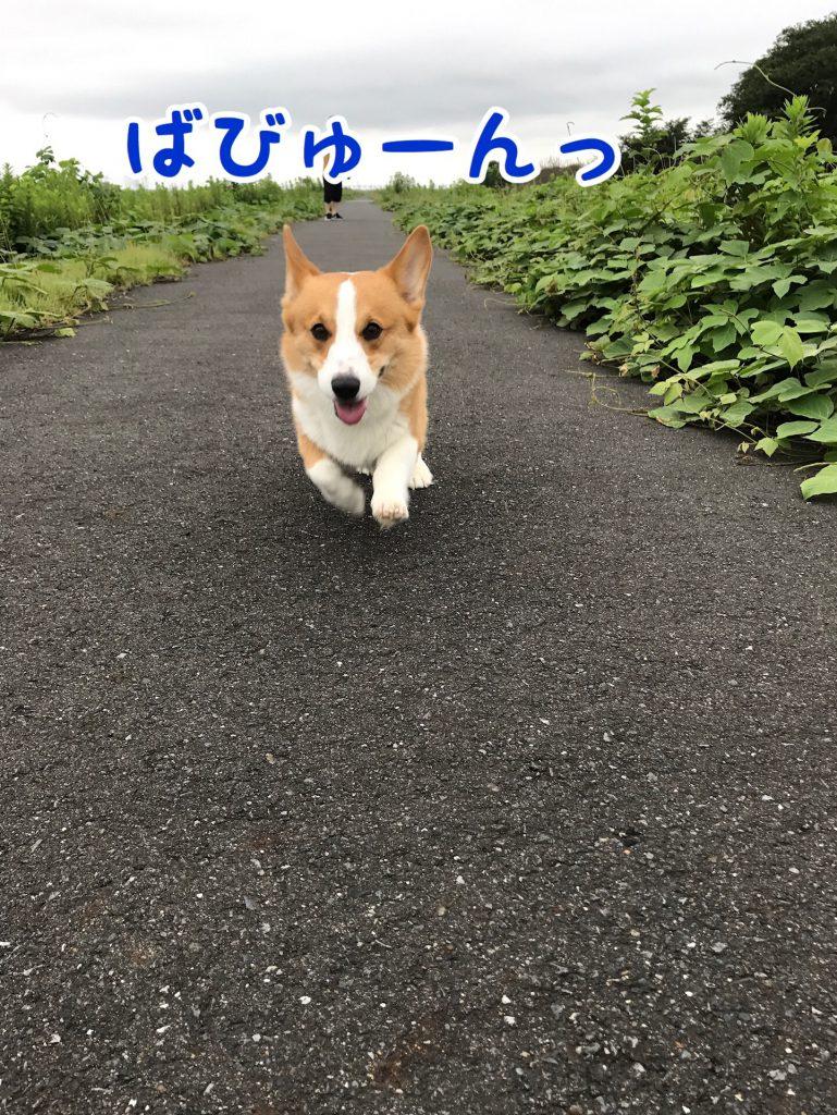 バビュ〜ン!!!