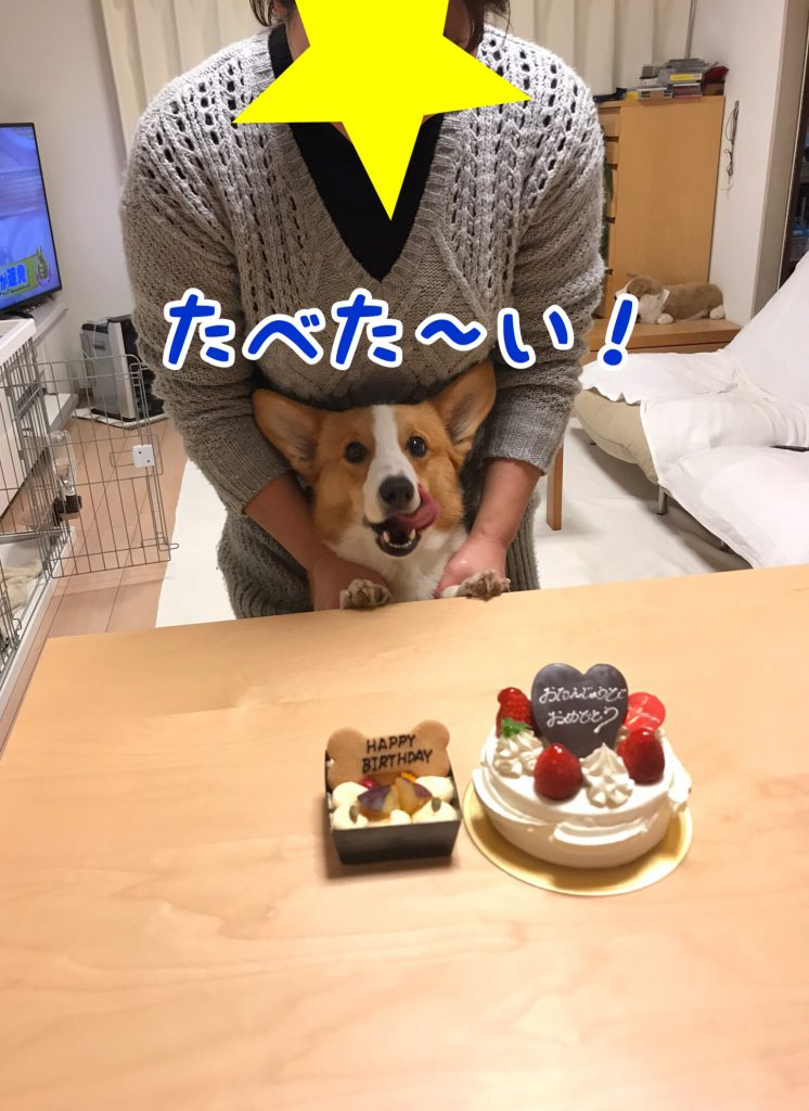 食べたいでし!