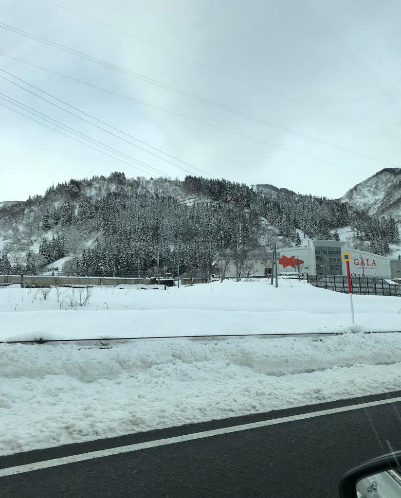 関越道の雪景色