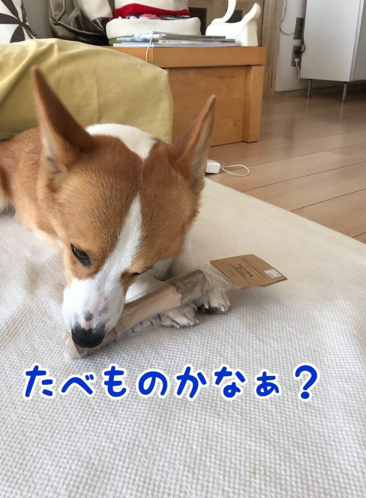 食べ物かなぁ?