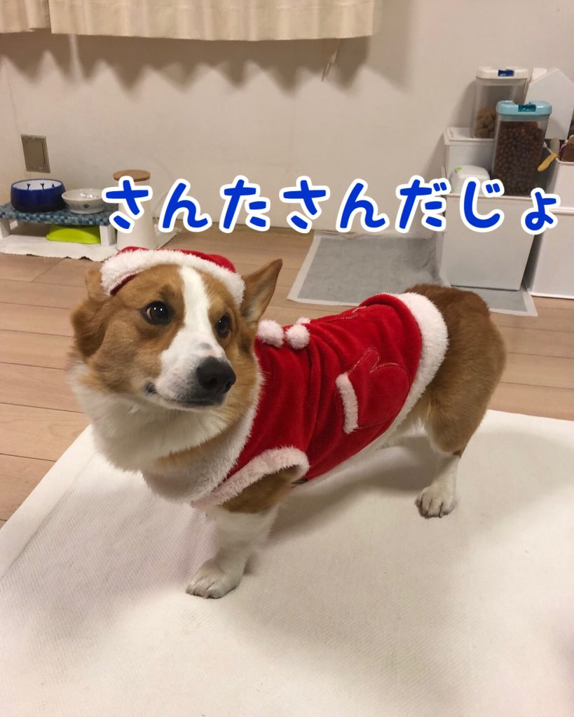 はるサンタ登場!!