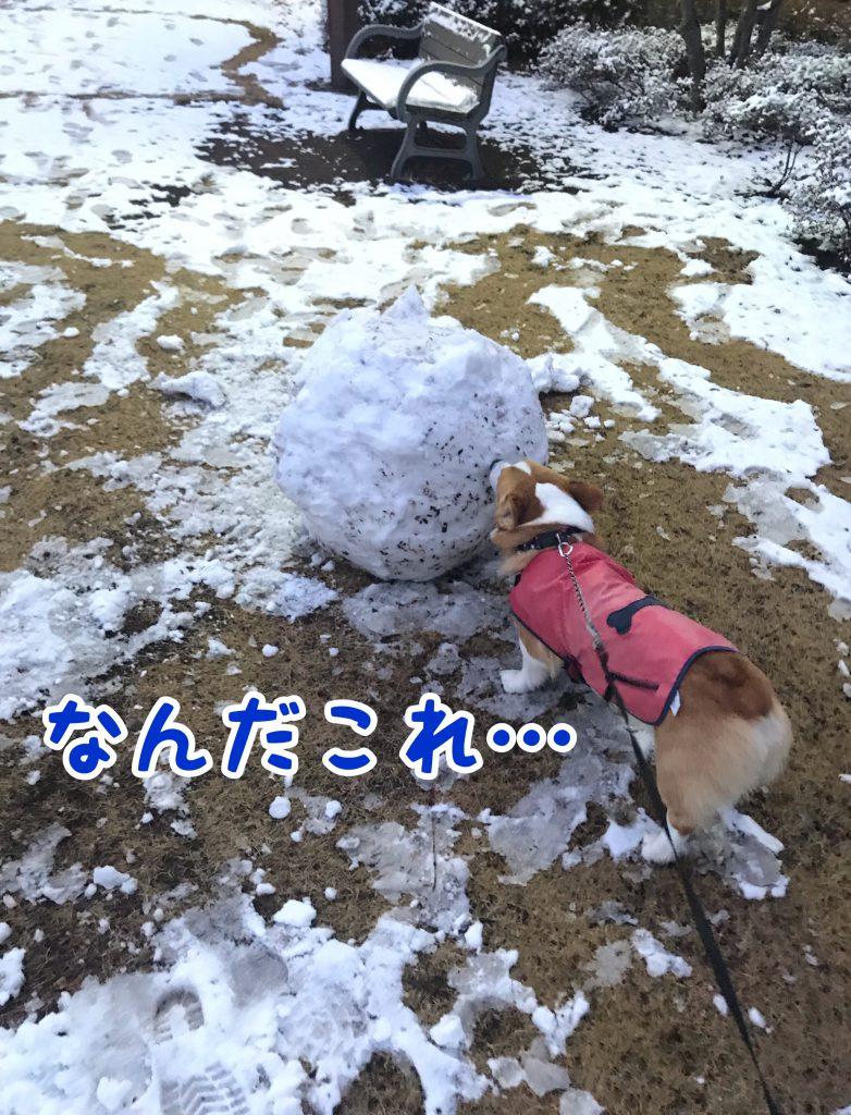 はると雪のかたまり?