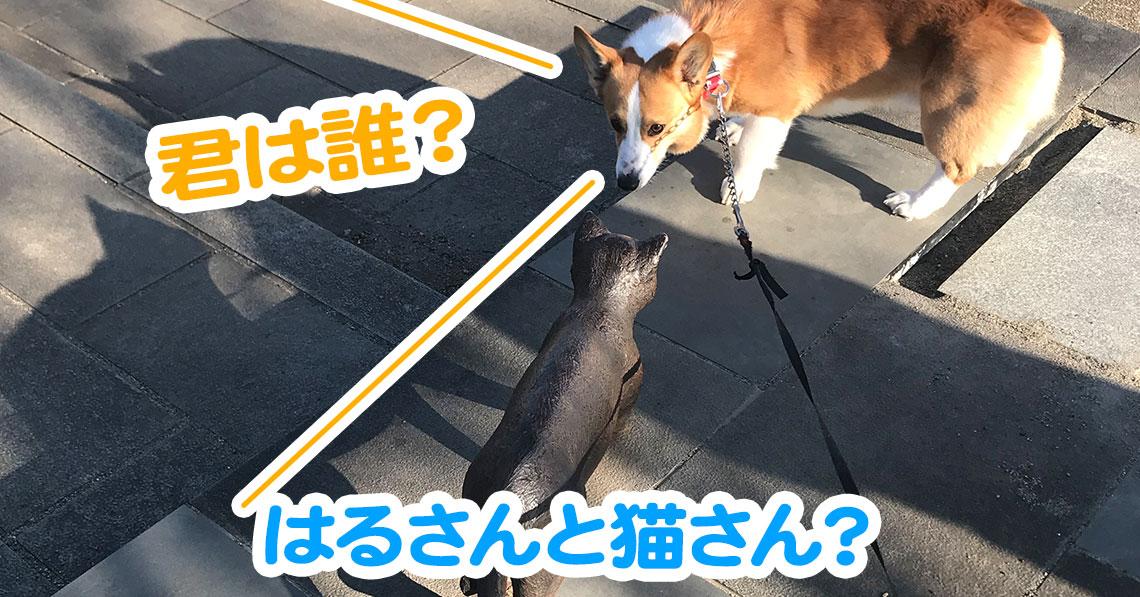 はるさんと猫さん?